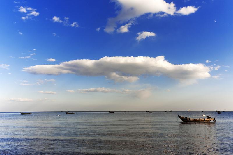 海边海鸥风景内容海边海鸥风景版面设计