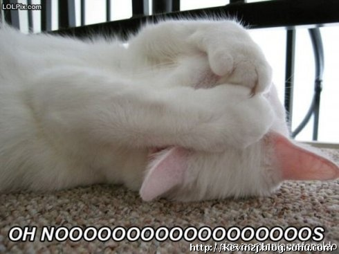 崩溃兔子图片可爱