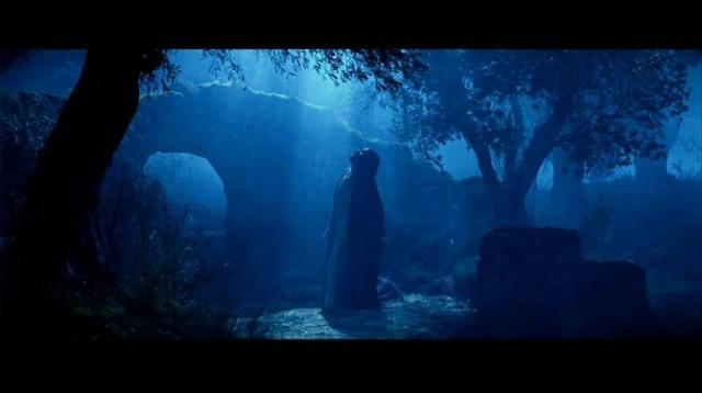 【为生歌唱】今生跟随主耶稣