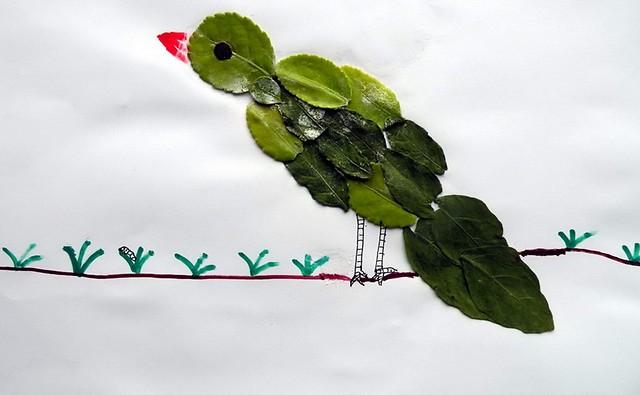 用树叶做成的画_树叶儿鱼-种子-发芽-开花-搜狐博客