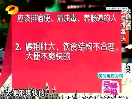 p-nk-try歌词_百科全说----王明勇肠道排毒-大城小爱-搜狐博客