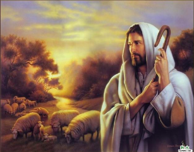 圣歌隽语 天父顾念你
